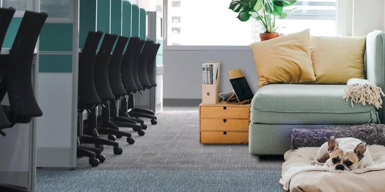 Transformatie-van-kantoren-tot-appartementen-1